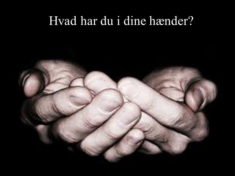 Hvad har du i dine hænder
