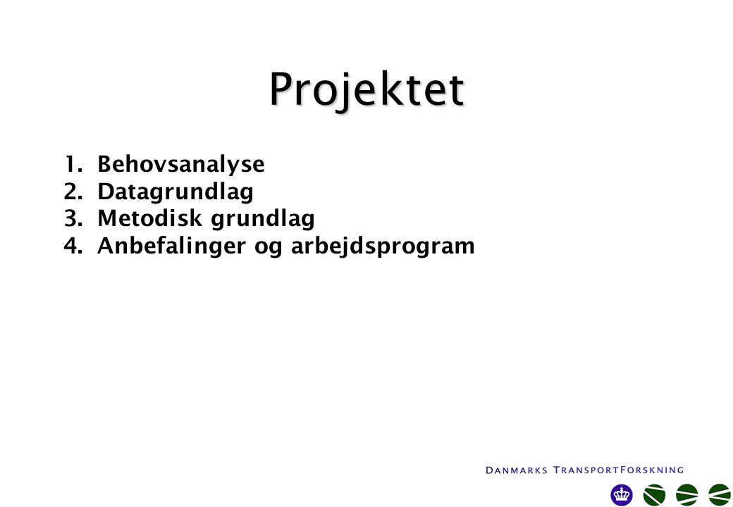Projektet 1.Behovsanalyse 2.Datagrundlag 3.Metodisk grundlag 4.Anbefalinger og arbejdsprogram