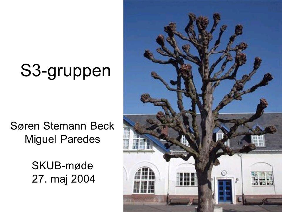 S3-gruppen Søren Stemann Beck Miguel Paredes SKUB-møde 27. maj 2004