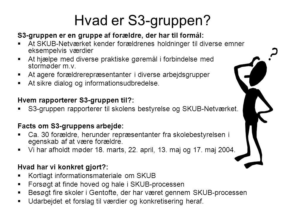 Hvad er S3-gruppen.