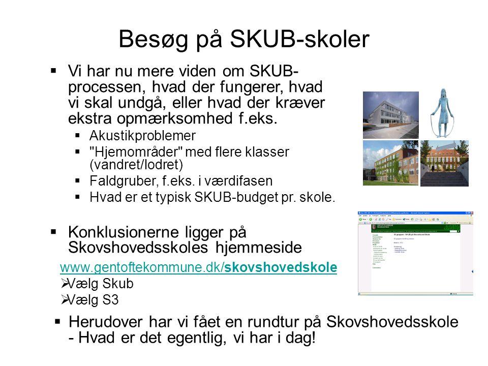 Besøg på SKUB-skoler  Vi har nu mere viden om SKUB- processen, hvad der fungerer, hvad vi skal undgå, eller hvad der kræver ekstra opmærksomhed f.eks.