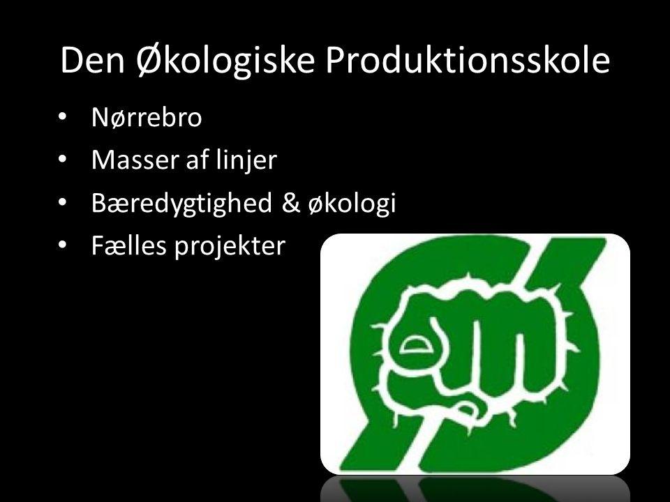 Den Økologiske Produktionsskole Nørrebro Masser af linjer Bæredygtighed & økologi Fælles projekter