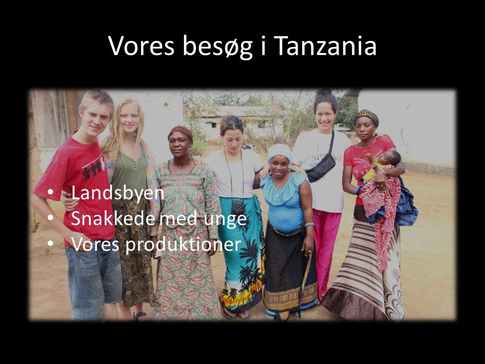 Vores besøg i Tanzania Landsbyen Snakkede med unge Vores produktioner
