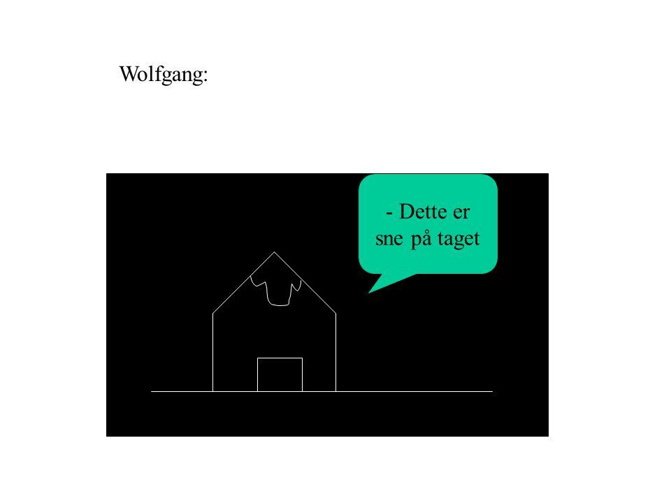 - Dette er sne på taget Wolfgang: