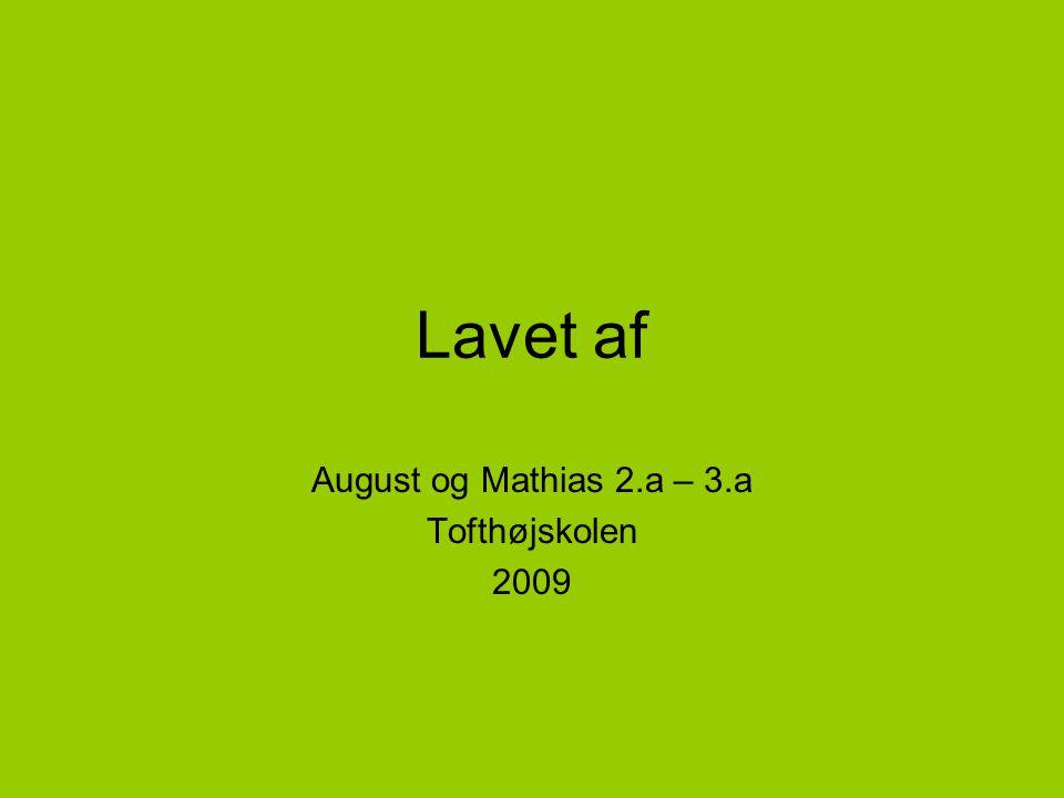Lavet af August og Mathias 2.a – 3.a Tofthøjskolen 2009