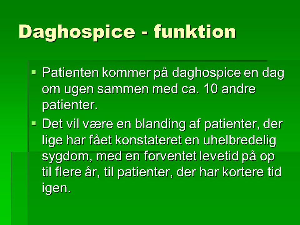 Daghospice - funktion  Patienten kommer på daghospice en dag om ugen sammen med ca.