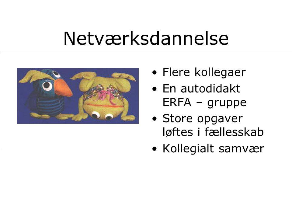 Netværksdannelse Flere kollegaer En autodidakt ERFA – gruppe Store opgaver løftes i fællesskab Kollegialt samvær