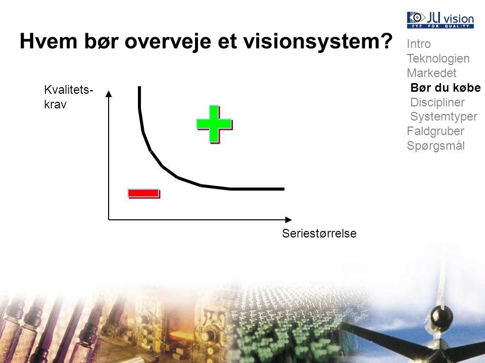Hvem bør overveje et visionsystem.