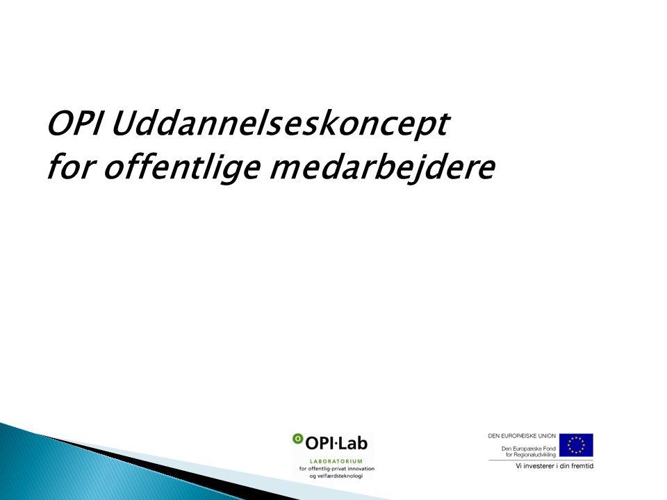OPI Uddannelseskoncept for offentlige medarbejdere