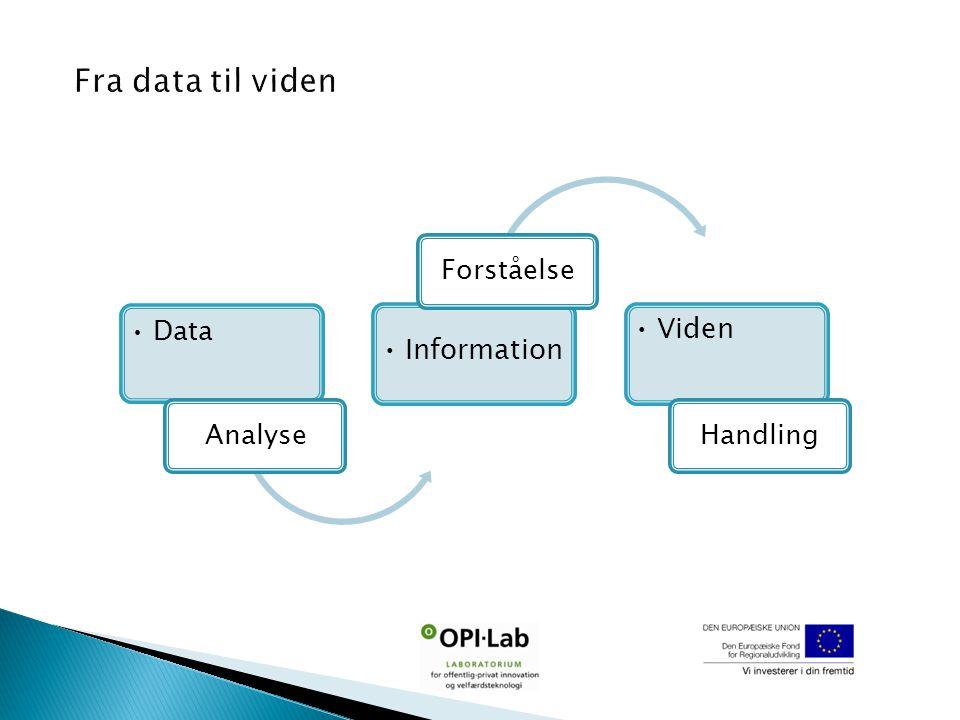 Data Analyse Information Forståelse Viden Handling