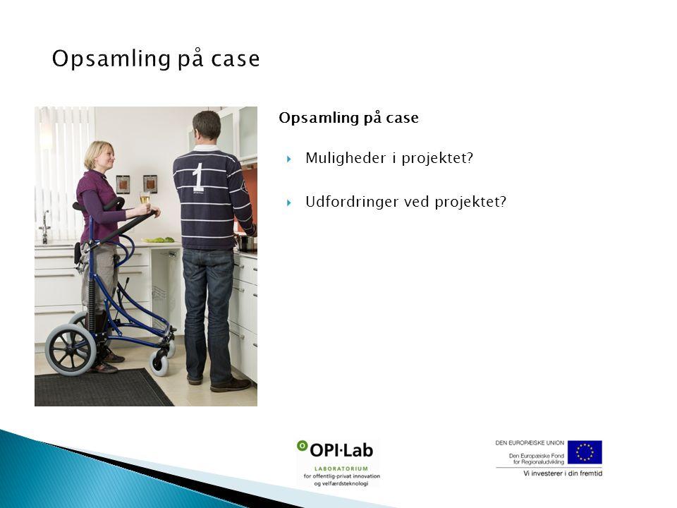 Opsamling på case  Muligheder i projektet  Udfordringer ved projektet