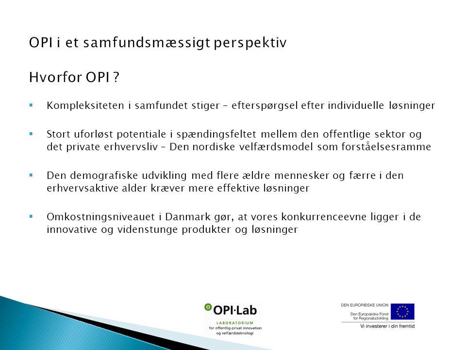  Kompleksiteten i samfundet stiger – efterspørgsel efter individuelle løsninger  Stort uforløst potentiale i spændingsfeltet mellem den offentlige sektor og det private erhvervsliv – Den nordiske velfærdsmodel som forståelsesramme  Den demografiske udvikling med flere ældre mennesker og færre i den erhvervsaktive alder kræver mere effektive løsninger  Omkostningsniveauet i Danmark gør, at vores konkurrenceevne ligger i de innovative og videnstunge produkter og løsninger