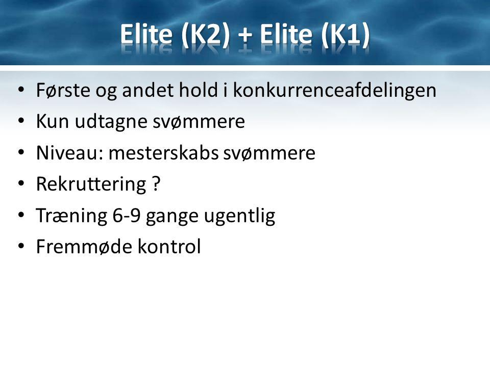 Første og andet hold i konkurrenceafdelingen Kun udtagne svømmere Niveau: mesterskabs svømmere Rekruttering .