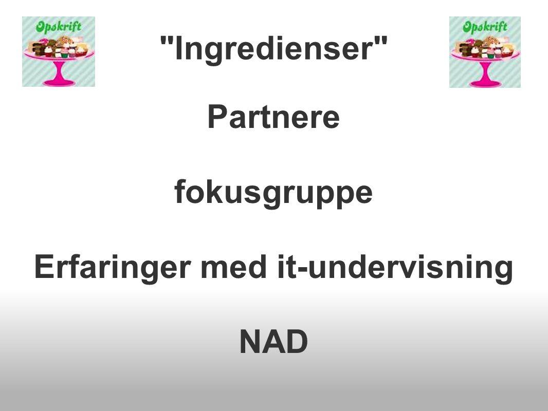 Ingredienser Partnere fokusgruppe Erfaringer med it-undervisning NAD