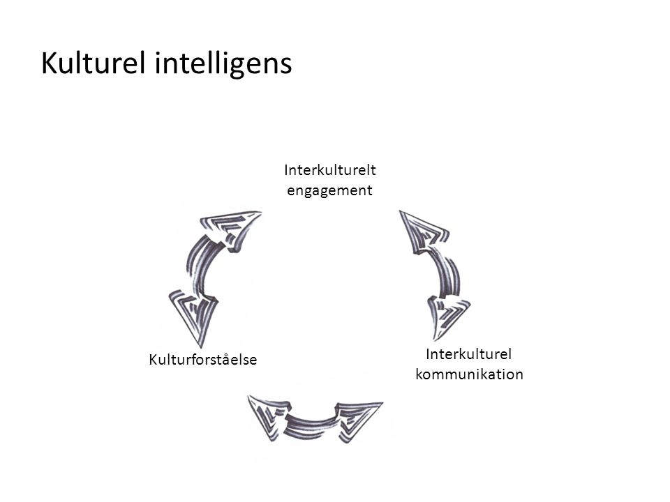 Kulturel intelligens Interkulturelt engagement Interkulturel kommunikation Kulturforståelse