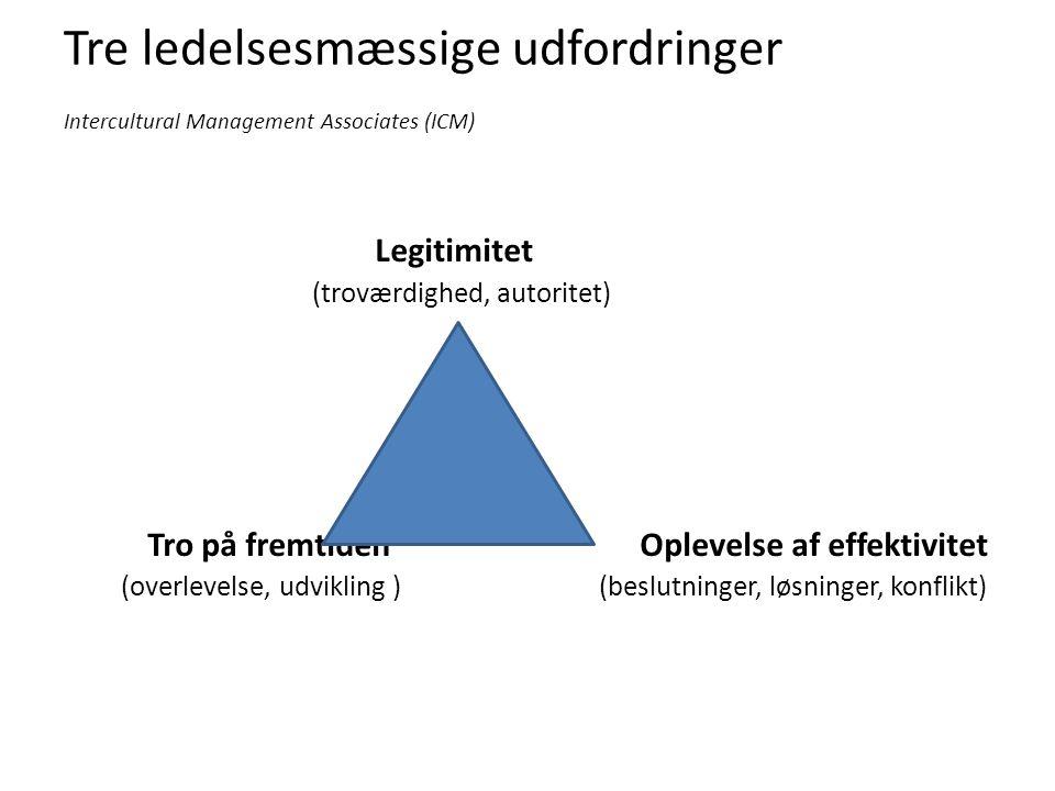 Tre ledelsesmæssige udfordringer Intercultural Management Associates (ICM) Legitimitet (troværdighed, autoritet) Tro på fremtiden Oplevelse af effektivitet (overlevelse, udvikling ) (beslutninger, løsninger, konflikt)