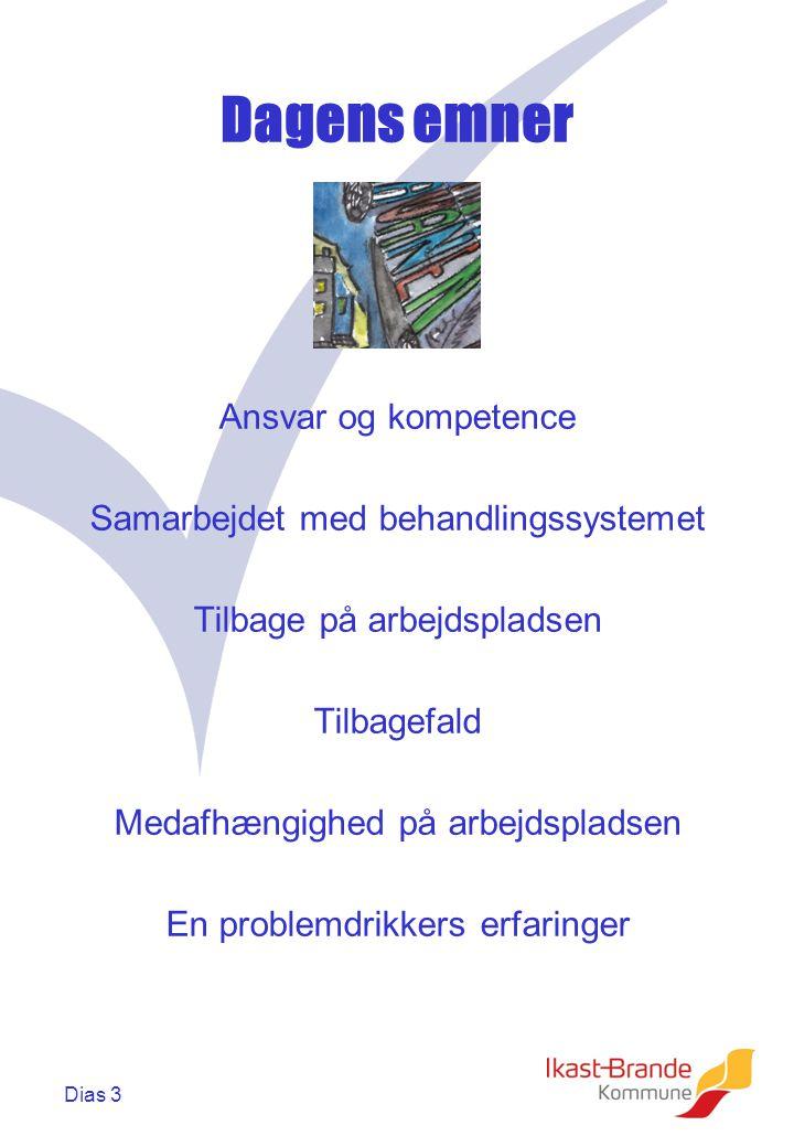 Dias 3 Dagens emner Ansvar og kompetence Samarbejdet med behandlingssystemet Tilbage på arbejdspladsen Tilbagefald Medafhængighed på arbejdspladsen En problemdrikkers erfaringer