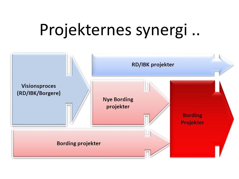 Projekternes synergi..