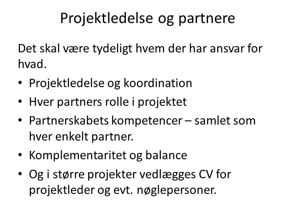 Projektledelse og partnere Det skal være tydeligt hvem der har ansvar for hvad.