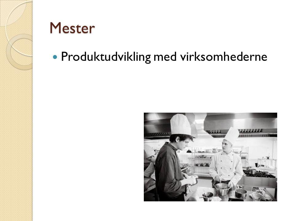 Produktudvikling med virksomhederne Mester