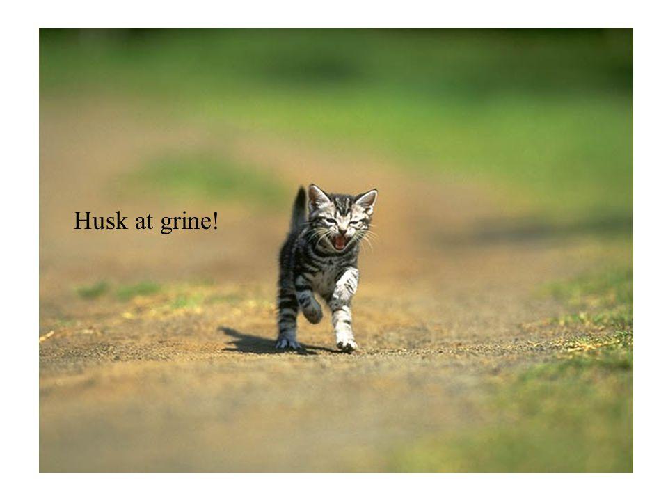 Husk at grine!