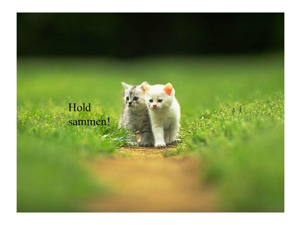 Hold sammen!