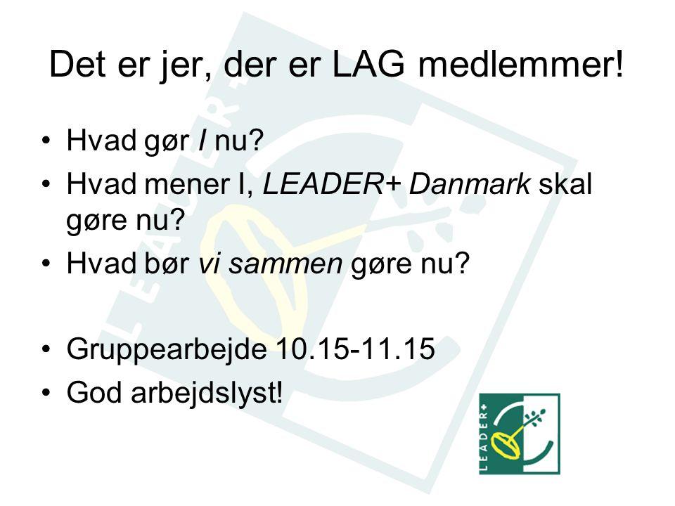 Det er jer, der er LAG medlemmer. Hvad gør I nu. Hvad mener I, LEADER+ Danmark skal gøre nu.