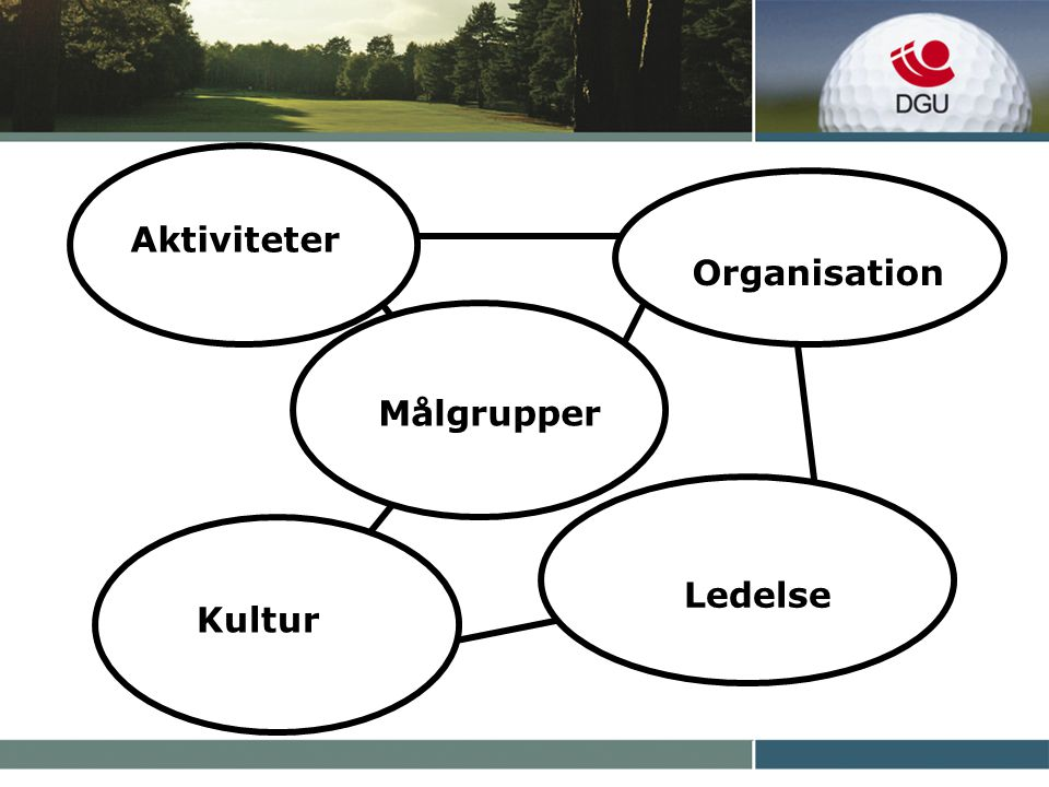 Aktiviteter Målgrupper Kultur Organisation Ledelse