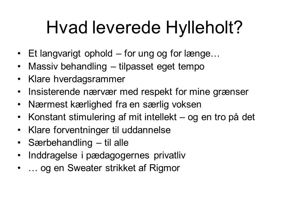 Hvad leverede Hylleholt.