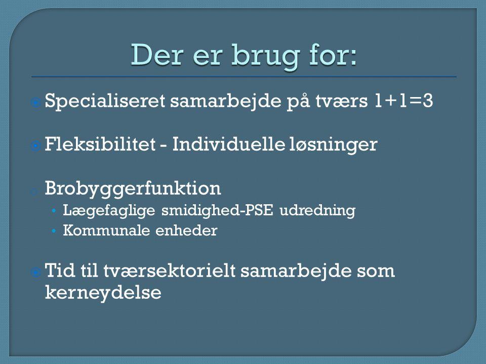  Specialiseret samarbejde på tværs 1+1=3  Fleksibilitet - Individuelle løsninger o Brobyggerfunktion Lægefaglige smidighed-PSE udredning Kommunale enheder  Tid til tværsektorielt samarbejde som kerneydelse