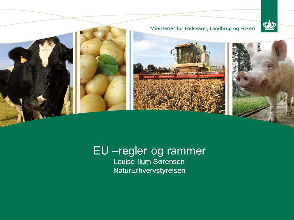EU –regler og rammer Louise Ilum Sørensen NaturErhvervstyrelsen