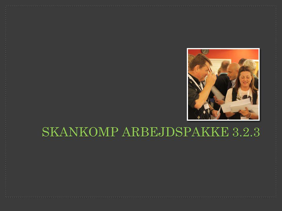 SKANKOMP ARBEJDSPAKKE 3.2.3
