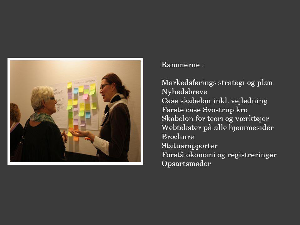 Rammerne : Markedsførings strategi og plan Nyhedsbreve Case skabelon inkl.