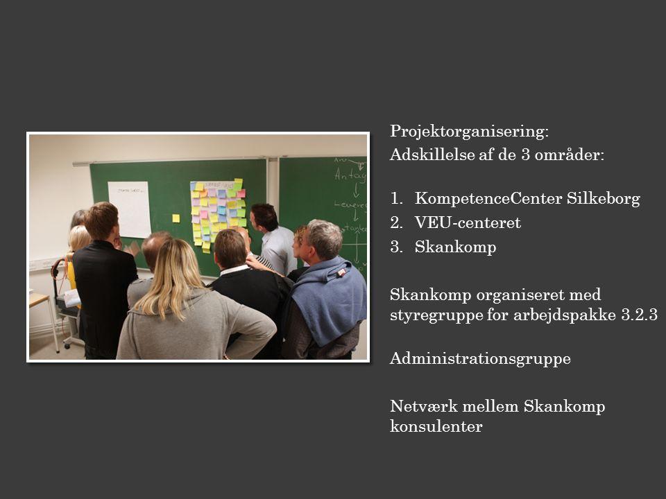 Projektorganisering: Adskillelse af de 3 områder: 1.KompetenceCenter Silkeborg 2.VEU-centeret 3.Skankomp Skankomp organiseret med styregruppe for arbejdspakke 3.2.3 Administrationsgruppe Netværk mellem Skankomp konsulenter