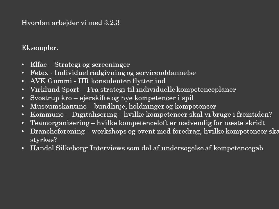 Hvordan arbejder vi med 3.2.3 Eksempler: Elfac – Strategi og screeninger Føtex - Individuel rådgivning og serviceuddannelse AVK Gummi - HR konsulenten flytter ind Virklund Sport – Fra strategi til individuelle kompetenceplaner Svostrup kro – ejerskifte og nye kompetencer i spil Museumskantine – bundlinje, holdninger og kompetencer Kommune - Digitalisering – hvilke kompetencer skal vi bruge i fremtiden.
