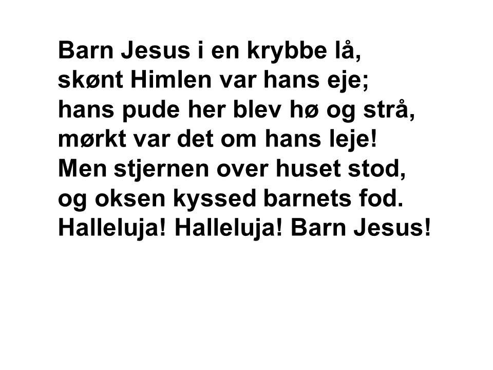 Barn Jesus i en krybbe lå, skønt Himlen var hans eje; hans pude her blev hø og strå, mørkt var det om hans leje! Men stjernen over huset stod, og okse