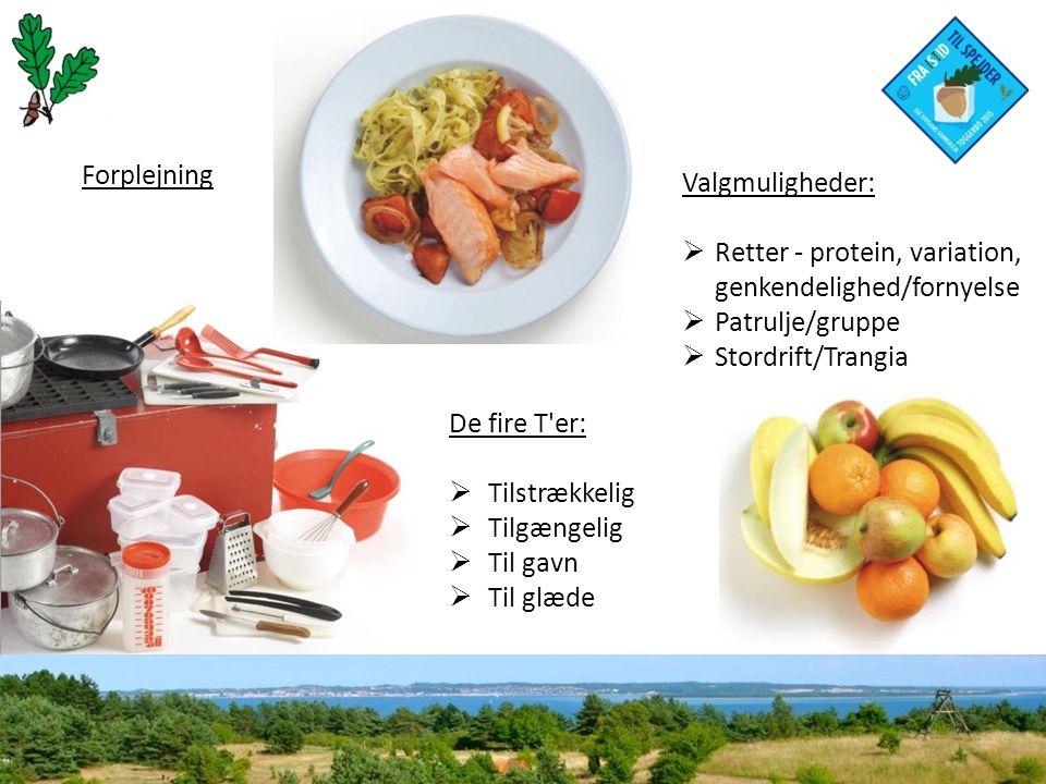 Forplejning De fire T er:  Tilstrækkelig  Tilgængelig  Til gavn  Til glæde Valgmuligheder:  Retter - protein, variation, genkendelighed/fornyelse  Patrulje/gruppe  Stordrift/Trangia