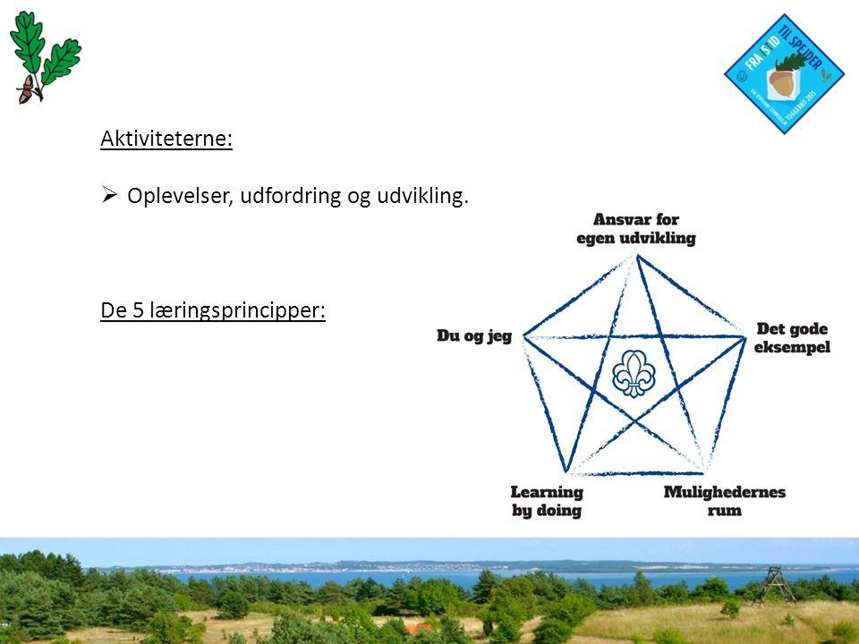 Aktiviteterne:  Oplevelser, udfordring og udvikling. De 5 læringsprincipper: