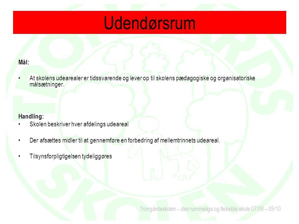 Trongårdsskolen – den rummelige og fleksible skole 07/08 – 09/10 Mål: At skolens udearealer er tidssvarende og lever op til skolens pædagogiske og organisatoriske målsætninger.