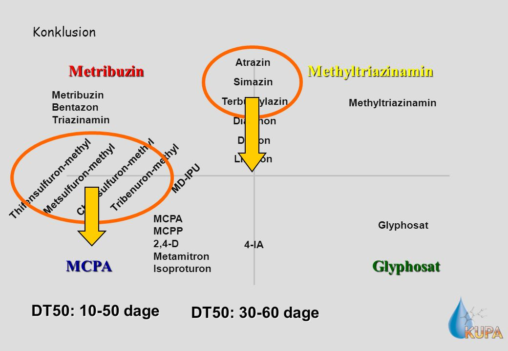 Konklusion Metribuzin MCPAGlyphosat Methyltriazinamin MD-IPU 4-IA Diazinon Metsulfuron-methyl Tribenuron-methyl Thifensulfuron-methyl Chlorsulfuron-methyl Terbuthylazin Atrazin Simazin Diuron Linuron Metribuzin Bentazon Triazinamin Glyphosat MCPA MCPP 2,4-D Metamitron Isoproturon Methyltriazinamin DT50: 10-50 dage DT50: 30-60 dage