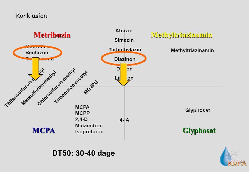 Konklusion Metribuzin MCPAGlyphosat Methyltriazinamin MD-IPU 4-IA Diazinon Metsulfuron-methyl Tribenuron-methyl Thifensulfuron-methyl Chlorsulfuron-methyl Terbuthylazin Atrazin Simazin Diuron Linuron Metribuzin Bentazon Triazinamin Glyphosat MCPA MCPP 2,4-D Metamitron Isoproturon Methyltriazinamin DT50: 30-40 dage