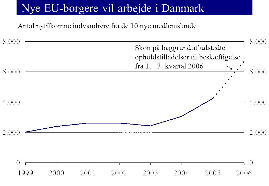 Nye EU-borgere vil arbejde i Danmark Antal nytilkomne indvandrere fra de 10 nye medlemslande Familiesammenføring EU/EØS opholdstilladelse r Beskæftigelse Uddannelse Andre særlige grunde Skøn på baggrund af udstedte opholdstilladelser til beskæftigelse fra 1.