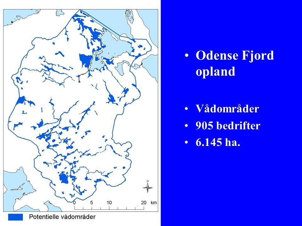 Odense Fjord opland Vådområder 905 bedrifter 6.145 ha.