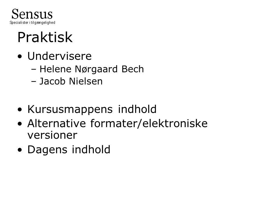 Praktisk Undervisere –Helene Nørgaard Bech –Jacob Nielsen Kursusmappens indhold Alternative formater/elektroniske versioner Dagens indhold
