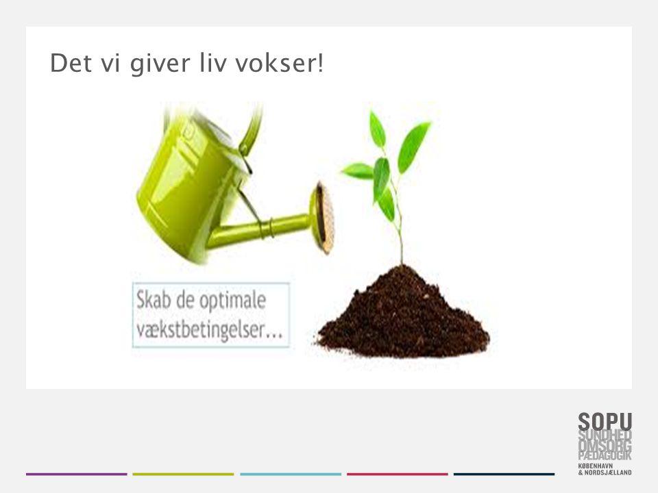 Tekstslide med bullets Brug 'Forøge / Formindske indryk' for at skifte mellem de forskellige niveauer Det vi giver liv vokser!.