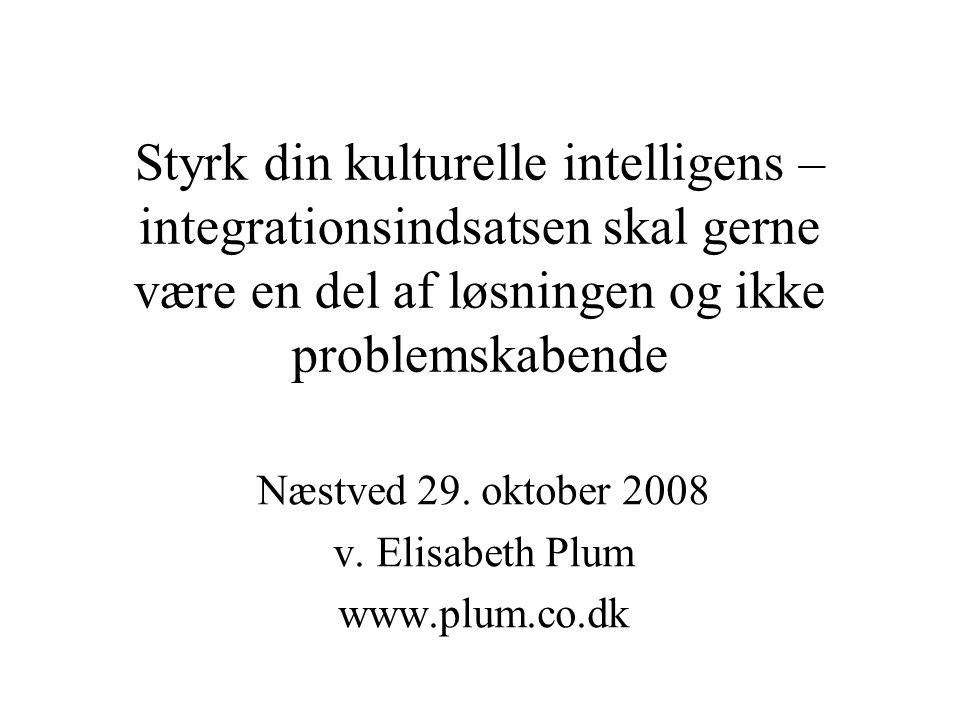 Styrk din kulturelle intelligens – integrationsindsatsen skal gerne være en del af løsningen og ikke problemskabende Næstved 29.