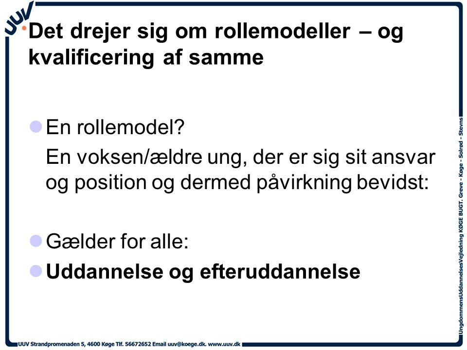 Det drejer sig om rollemodeller – og kvalificering af samme En rollemodel.