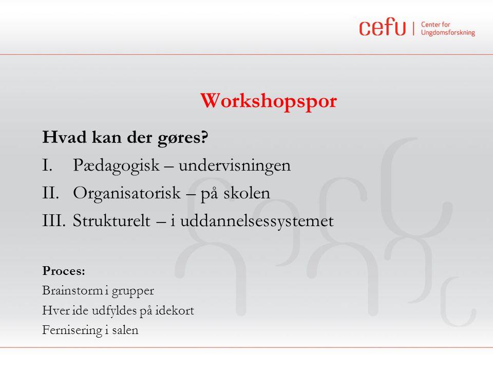 Workshopspor Hvad kan der gøres.