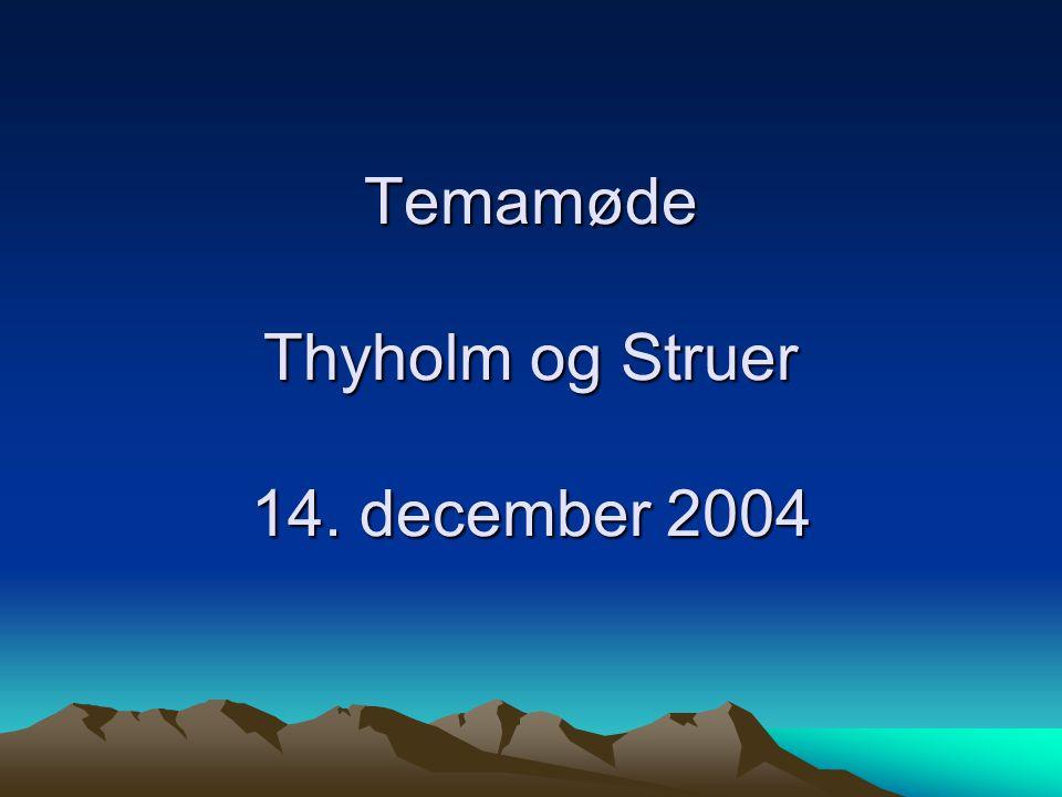 Temamøde Thyholm og Struer 14. december 2004