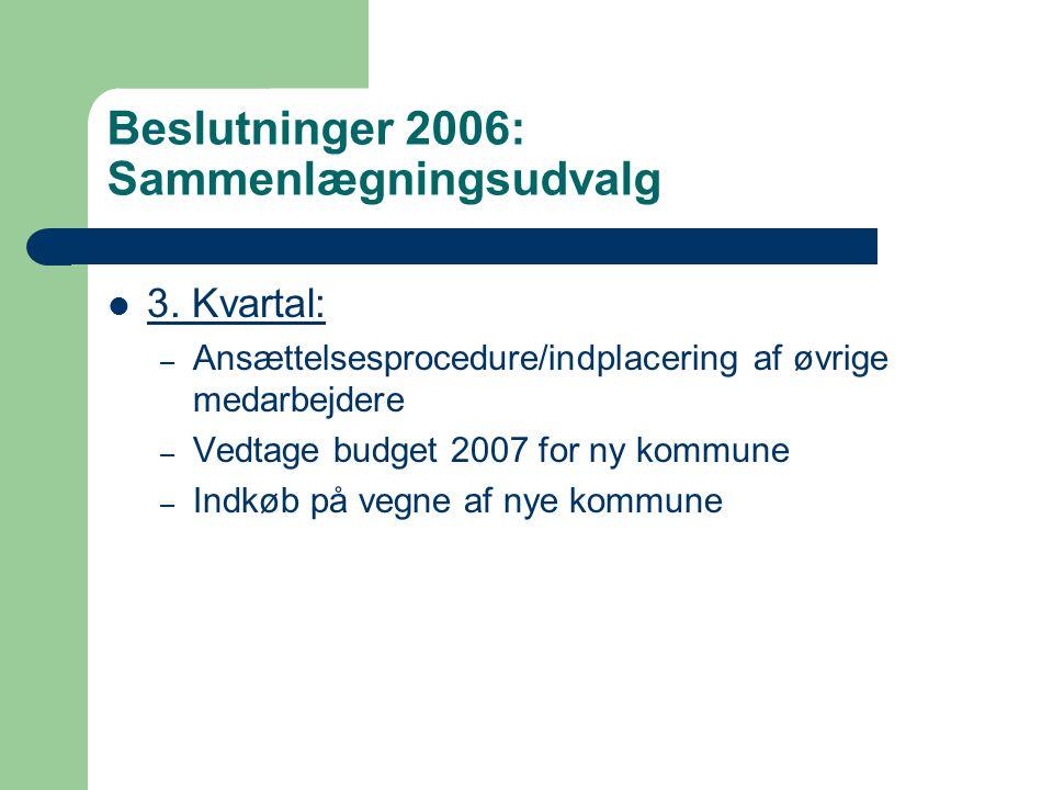 Beslutninger 2006: Sammenlægningsudvalg 3.